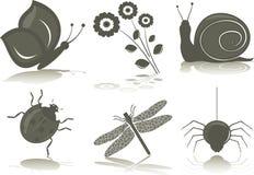 Insectos (iconos) Imágenes de archivo libres de regalías