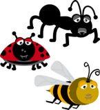 Insectos (vetor) Fotos de Stock Royalty Free