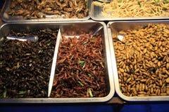 Insectos y gusanos fritos de la comida para comer Imagen de archivo