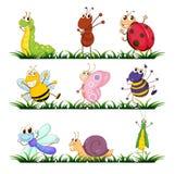 Insectos y pequeños animales Fotos de archivo