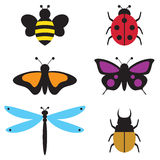 Insects. Vector illustration of insects including bee, beetle, butterfly, dragonfly Royalty Free Stock Photos