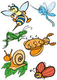 Insects. Set of different caricatures of insects Stock Photo