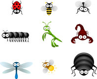 Free Insects Stock Photos - 9971033