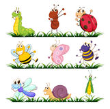 Insects And Small Animals Stock Photos
