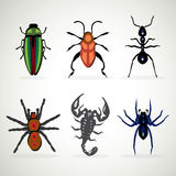 Insects animal dangerous icons  Royalty Free Stock Photos