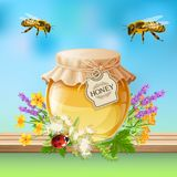 Insects Bees Realistic Royalty Free Stock Image