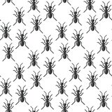 Insects bug vector seamless pattern bugs insects wallpaper cartoon design summer vector illustrtion Royalty Free Stock Image