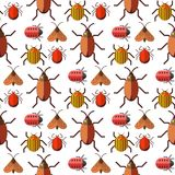 Insects bug vector seamless pattern bugs insects wallpaper cartoon design summer vector illustrtion Stock Photo