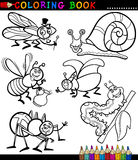 Insects and bugs for Coloring Book Stock Photos