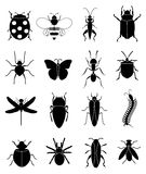 Insects bugs icons set Royalty Free Stock Image