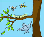 Insects. Cartoon illustration insects in the nature Royalty Free Stock Photo