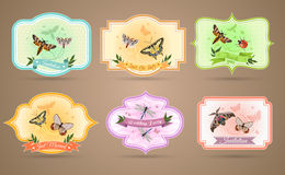 Insects Emblems Set Royalty Free Stock Image