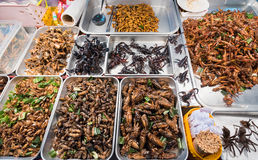 Insects exotic food Royalty Free Stock Images