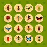 Insects flat icons set Stock Photos