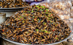 Insects food at Cambodia Royalty Free Stock Images