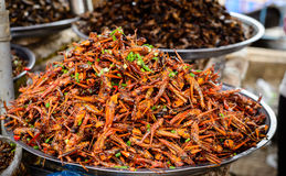 Insects food at Cambodia. Fried Locusts & Fried Grasshoppers - a kind of insects food which were sold at Kampong Thom market, Cambodia in September 2014 Stock Images