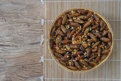 Insects food.Fried silkworm pupae with garlic stock images