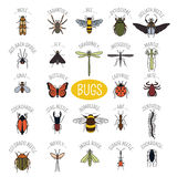 Insects icon flat style. 24 pieces in set. Colour version Stock Image
