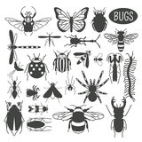 Insects icon flat style. 24 pieces in set. Colour version Royalty Free Stock Images