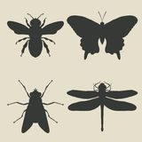 Insects icon set Stock Illustration