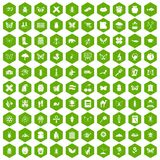 100 insects icons hexagon green. 100 insects icons set in green hexagon isolated vector illustration Stock Photography