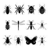 Insects icons Stock Images