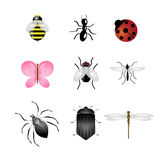 Insects icons set. Set of nine insects isolated on white background.There are a bee,an ant, a ladybird, a butterfly,a fly, a mosquito, a spider a cockroach and a Royalty Free Stock Photos