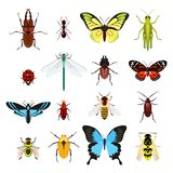 Insects icons set Stock Photos