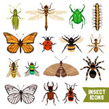 Insects Icons Set Stock Images