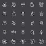 Insects icons set Stock Image