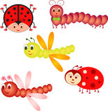 Insects Illustrations. Insect cartoon illustrations of ladybugs, dragonflies, and caterpillar, yellow dragonfly, brown dragonfly, red ladybug, brown caterpillar Stock Photography