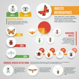 Insects Infographic Set Royalty Free Stock Photo