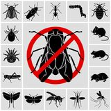 Insects and pests detailed icons set stock illustration