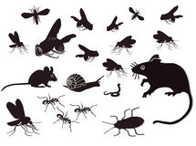 Insects and rodents. Black and white illustration of multiple bugs, snake and vermin Royalty Free Stock Photo