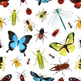 Insects seamless pattern Royalty Free Stock Photo