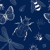 Insects seamless pattern Royalty Free Stock Image