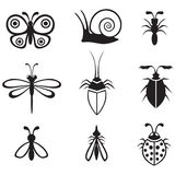 Insects set Stock Photo
