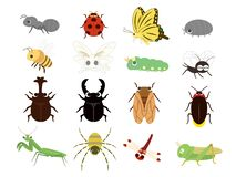 Insects set royalty free illustration