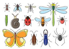 Insects set in flat style. Line art bugs icon collection. Stock Image
