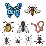 Insects set icons in cartoon style. Big collection of insects vector symbol stock illustration Stock Images