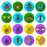 Insects set icons in flat style. Big collection of insects vector symbol stock illustration Stock Images