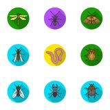 Insects set icons in flat style. Big collection of insects vector symbol stock illustration Stock Image