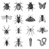 Insects set icons in monochrome style. Big collection of insects vector symbol stock illustration Stock Photo