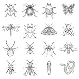 Insects set icons in outline style. Big collection of insects vector symbol stock illustration Royalty Free Stock Photos