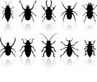 Insects silhouettes set Royalty Free Stock Images