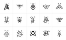 Insects sketch icon set. Stock Photography