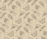 Insects sketch pattern with dragonfly, fly, b Stock Photography