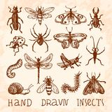 Insects sketch set Stock Images
