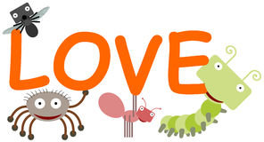 Insects Spells Love Royalty Free Stock Images