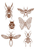 Insects tattoos in tribal style Royalty Free Stock Image